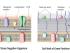 gram-positive-vs-gram-negative-cell-wall