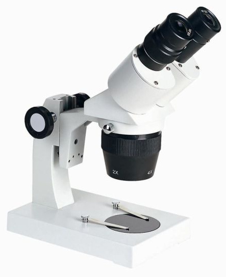 image above is a stereo microscope