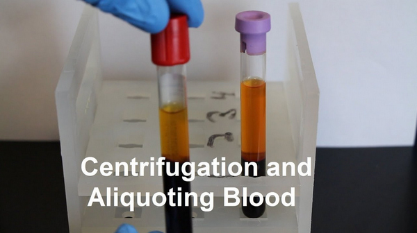 Centrifugation and aliquoting blood