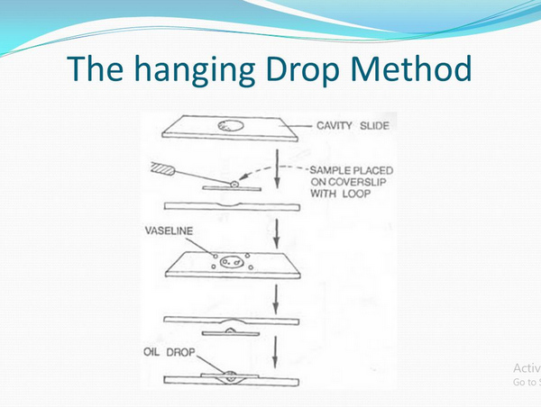 Motility test using the hanging drop method