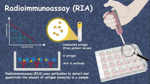 Radioimmunoassay is used in a variety of industries such as pharmacology, disease diagnosis, detection of allergies, and the likes