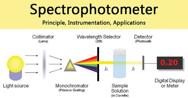 applications of a spectrophotometer as shown in the image